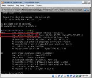 Узнать IP адрес сервера